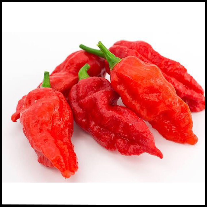 Assam Chillies, Bhoot jolokia
