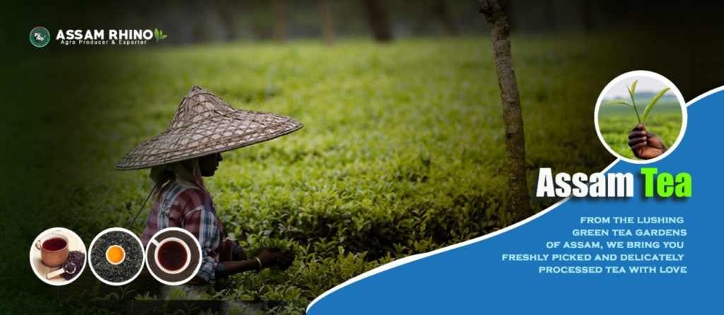 Assam Tea | Assam Products Agricultural Exports