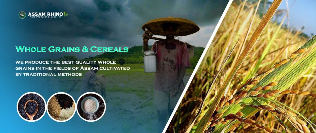 Whole grains and cereals | Assam Agricultural Products Exports